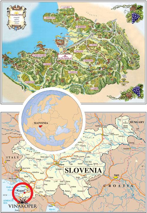 VINAKOPER-Zemljevid-Map-500