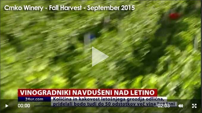video-holder-crnko-harvest-sept-2015